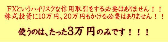 ワラントバナー.JPG